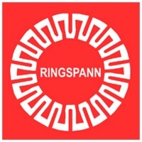 Ringspann完整的飞轮BC…X系列的应用
