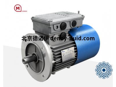Motovario三相电机TP系列180M型号