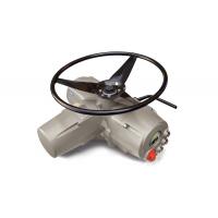 Biffi多转电动执行器ICON3000  ICON 2000