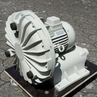 德国ELEKTROR输送鼓风机PFL1 1000-D3-R-P-225M用于直接运输散装货物