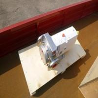 SSP PUMPS N1-000L-H07 系列不锈钢旋片泵肥皂业使用