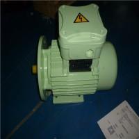 意大利CEMP安全电机TCI