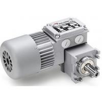Mini motor 减速电机MCE 100P