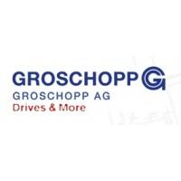 GROSCHOPP直流电机/交流电机/无刷直流电动机