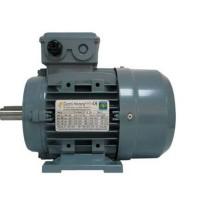 荷兰品牌Dutchi鼠笼感应电机SCA180LA6E2U46 1001