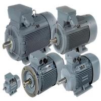 Dutchi 鼠笼式感应电机 TCA112M2E3U46