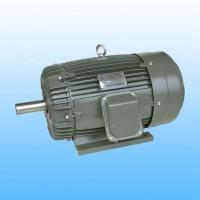 Dutchi荷兰鼠笼式感应电机型号TCA112M2E3U46解析