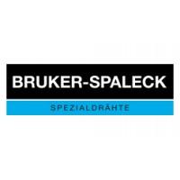 Bruker-spaleck焊带SnBi43/57 0,1x1,5mm