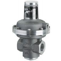 MEDENUS气体压力调节器R50参数详情